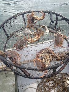 Crab Fishing in Alaska